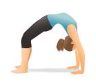 wheel fatima yoga