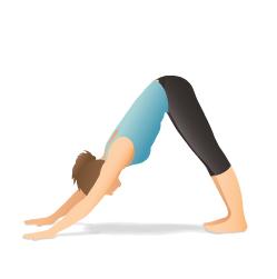 downward_dog fatima yoga